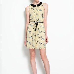 Pale Yellow Dress w/Bird Print 💛🕊